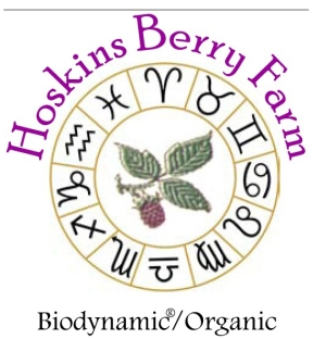 Hoskins Berry Farm Living Organic Black Berry Vinegar Demeter Certified Biodynamic